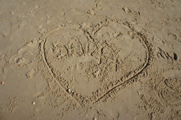 DSC05787RE b25e21132d6857925830746d610970aa 1 - Пляжи Хайфы. Пляж Студентов. Отзыв