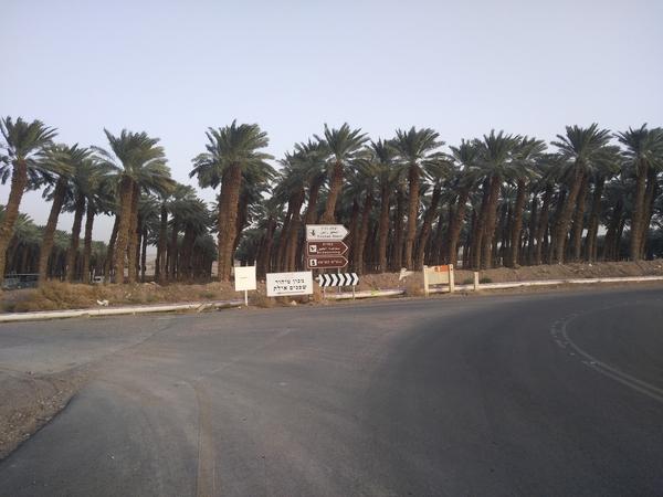 IMG 20181029 161041RE 55a19dfffcc765ca10c294d789c6a943 1 - Как мы добирались из Эйлата (Израиль) в Акабу (Иордания)