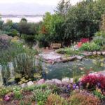 Ботанический сад в Эйлате. Краткая информация.
